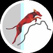 Tierärztliche Praxis für physikalische Medizin