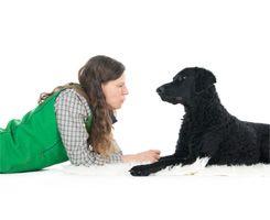 Dr. Gieren mit Hund Macy